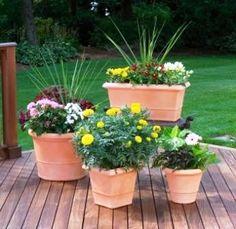 spring garden containers | Container Garden Ideas: Ideas For Container Gardening, Container ...