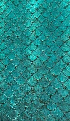 Turquoise scales