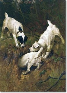 arthur-wardle-jack-russell-terriers-at-rabbit-hole-1886-38-x-28-original-size-in-inches.jpg (363×500)