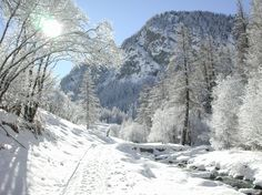 Hiver à Saint-Véran.In the Hautes-Alpes, near the village of Saint-Veran, discover the winter beauty of the Regional Natural Park of Queyras. Saint Véran, Snow Forest, Garden Waterfall, Snow Pictures, Winter Love, Natural Park, Winter Scenery, Winter Beauty, White Picture