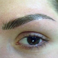 26 Best Cosmetic tattoo images | Eye brows, Eyebrow tattoo, Hair