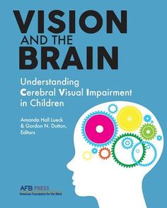 Vision and the Brain: Understanding Cerebral Visual Impairment in Children (CVI) Visually Impaired Activities, Braille, Vision Therapy, Visual Impairment, Special Needs Kids, Student Teaching, Working With Children, Blinds, United States