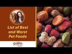 Best Cat Food For Sensitive Stomach | Pet Guide Pet Fresh, Best Cat Food, Animal Nutrition, Pet Nutrition, Dog Information, Pet News, Healthy Pets, Pet Health, Health Tips