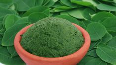 Many people are very curious about the Moringa – how it came out of obscurity to be a super food! Have you heard of it? It is believed to provide heaps of protein, vitamin C and calcium, and comes with many health benefits. Miracle Tree, Moringa Powder, Lose 20 Pounds, Cosmetic Dentistry, Anti Aging Skin Care, Teeth Whitening, Superfoods, Health Benefits, Herbalism