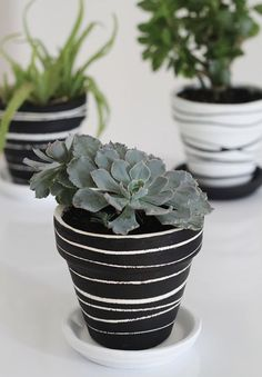 DIY how to paint terra cotta pots tips and tutorial. I used chalk paint to give my clay pot a modern but simple rainbow ombre design. Plus ideas for other ways to paint terracotta by hand. Perfect for holding succulents Painted Plant Pots, Painted Flower Pots, Painting Terracotta Pots, Painting Clay Pots, Painted Pebbles, Pots D'argile, Diy Recycling, Flower Pot Crafts, Diy Flower