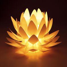 蓮花ライト