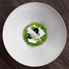 Lime Lemon Cucumber Verberna  at Atera Restaurant Atera Restaurant #cucumber #lemon #verbena and #lime #theartofplating #gastroart #michelinstar #food #foodie #foodart #foodpic #foodgram #foodphoto #foodshoot #foodphotography #instafood #gastrogram #finedining #truecooks #chefstalk #gatronomy #gourmet #sydneyautumnfruit #aussiefruit #inseasonnow #sydneymarkets #marketfresh #nswlargestprovidore by tandfallstates