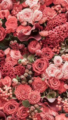 Florecitas flowers flower fleur fleurs bouquet