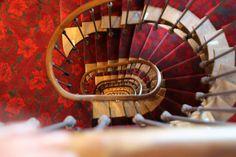 Braquenié carpet project for the Hotel Molière in Paris !
