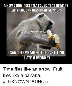 Dad Jokes, Funny Jokes, Fruit Flies, Word Play, The Last Time, Awesome Things, Grandchildren, Bananas, Best Funny Pictures