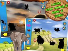 Animals Zoo Interactive Flash Cards for Kids Review. An app for