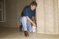As you probably already know, having mold in your basement can be an extremely dangerous situation. Basement mold is caused by having an excessive amount of moi Diy Pest Control, Termite Control, Pest Control Services, Mold In Basement, Basement Walls, Remove Black Mold, Remove Mold, Get Rid Of Mold, Pest Solutions