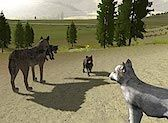 WolfQuest - An immersive, 3D wildlife simulation game that challenges players to learn about wolf ecology by living the life of a wild wolf in Yellowstone National Park