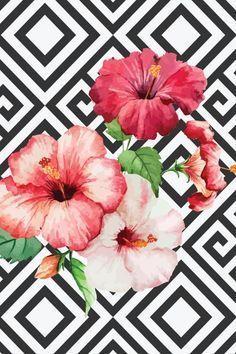 White & Flowers summer hibiscus wallpaper