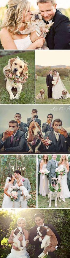 Puedes incorporar a vuestra mascota en las fotos de la ceremonia http://ideasparatuboda.wix.com/planeatuboda