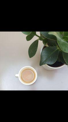 Coffee lovers ☕️☕️☕️