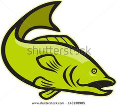 Illustration of a largemouth bass fish jumping done in cartoon style on isolated white background. - stock vector #largemouthbass #cartoon #illustration