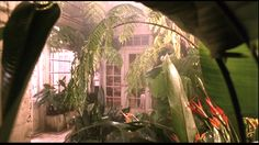 BRONTE'S CONSERVATORY IN GREEN CARD Janelle McCullochs Library of Design: Gardens, Films, Fantasies...