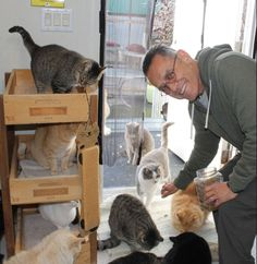 This Man Fed the Feral Cats at Work for Years – But When He Retired, He Did Something Really Amazing