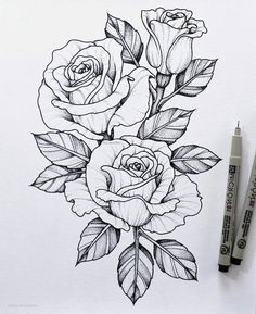 780 Flower Sketch Images Ideas Flower Sketches Flower Drawing Drawings