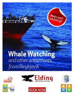 Travel | Visit Reykjavík