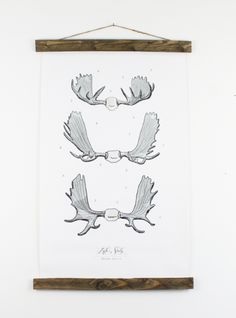 Moose Antler Study vol.1 - printed on textured canvas + the wood adds a rustic touch <3