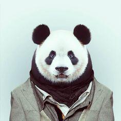 Zoo-Portraits-Yago-Partal
