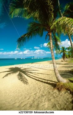 Pinneys Beach, Nevis 20 takes off #airbnb #airbnbcoupon #cuba