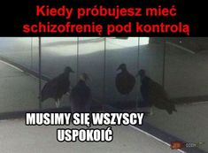 Very Funny Memes, Wtf Funny, Hahaha Hahaha, Polish Memes, Funny Mems, Everything And Nothing, Weird Stories, Life Humor, Best Memes