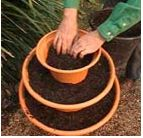You'll need  3 x imitation terracotta pots potting mix strawberry plants  Method  Decide where you want to put your strawberry tower before...