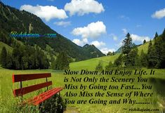 Slow Down And Enjoy Life. It is Not Only the Scenery You Miss by Going too Fast….You Also Miss the Sense of Where You are Going and Why....( I have to remember this!)