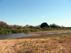 NINIVEMAIL: Blogger stále žasne. Kruger National Park