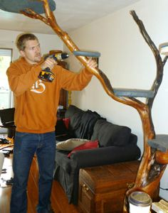 20 Purrfect DIY Projects for Cat Owners - Crazy Cat Lady, Crazy Cats, Cat Climber, Diy Cat Tree, Cat Towers, Cat Enclosure, Cat Room, Cat Accessories, Cat Treats