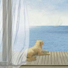 Fotobehang - Blue Breeze 3