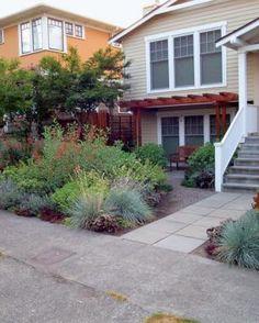 LOVE this kinda wild, no grass look!  |  A Front Yard Makeover | Fine Gardening