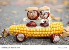 Chestnut couple in a corn cob convertible - handicrafts with children in autumn with oak . Animal Crafts For Kids, Craft Activities For Kids, Diy For Kids, Autumn Crafts, Nature Crafts, Paper Flower Patterns, Christmas Crafts To Sell, Egg Carton Crafts, Food Carving