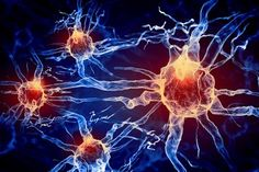 """BrainNets - Resistance is futile - scientists are now one step closer to the Borg of """"Star Trek,"""" wiring brains together into """"brainets"""" that can solve problems as teams"""