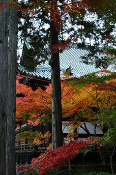 Shinnyo-do, Kyoto, Japan 真如堂、京都