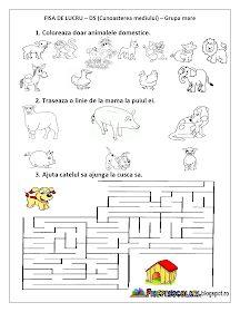 Fise de lucru - gradinita: FISE de lucru cu Animale DOMESTICE Grupa mica, Grupa mijlocie, Grupa mare Infant Activities, Preschool Activities, Pre K Math Worksheets, Preschool Lesson Plans, Kids Education, Childhood, Blog, Petra, Popcorn