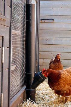 kippen voederbuis van pvc buizen