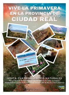 Polaroid Film, National Parks, Tourism, Cities, Spring