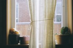 Washington House//Kodak Portra   Flickr - Photo Sharing!