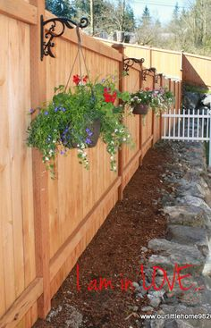 Hanging flowers on east side yard with vines growing on wall and a pathway to backyard
