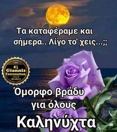 Beautiful Pink Roses, Good Night, Google, Nighty Night, Good Night Wishes