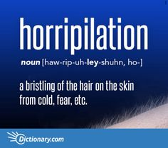 Horripilation - bristling of hair on the skin from cold, fear, etc. Unusual Words, Weird Words, Rare Words, Big Words, Words To Use, Unique Words, Great Words, Powerful Words, English Vocabulary Words