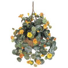 """One of nature's most interesting (and beautiful) plants, this lovingly crafted Nasturtium has it all – 261 leaves, 21 flowers, and 18 buds, all in a beautiful 10"""" hanging basket. Made with finest materials, this incredible plant is forever captured in its most striking state, and will bring you pleasure for decades."""