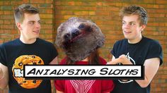 We rated/ 'Anialysed' Sloths with the magnificent AniaMags. She's absolutely hilarious and you should check her channel out!  http://youtube.com/nikinsammy http://twitter.com/nikinsammy http://facebook.com/nikinsammy