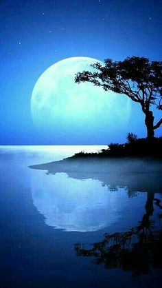 Moon Pictures, Pretty Pictures, Beautiful Moon, Beautiful World, Shoot The Moon, Jolie Photo, Moon Art, Blue Moon, Nature Photos