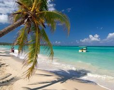 Fotos del viaje a Jamaica | Insolit Viajes