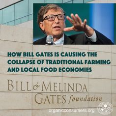 """Bill & Melinda Gates Foundation is funding the """"green revolution."""" The same """"revolution"""" that supports seed companies that are monopolizing the seed industry, promoting GMO seeds and food, and putting many farmers out of business: https://www.organicconsumers.org/news/how-bill-gates-causing-collapse-traditional-farming-and-local-food-economies"""